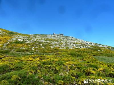 El Morezón - Sierra de Gredos; puente del pilar; rutas senderismo madrid;senderismo de ensueño